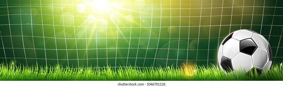 Soccer Ball in Goal on Green Grass and Sun Rays