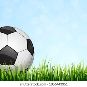 Soccer Ball with green grass