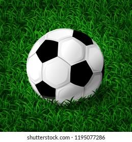 Soccer ball on the green grass. Vector illustration.