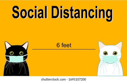 social distancing. black cat and white cat wear medical face mask. stay 6 feet away  to prevent virus (covid-19).