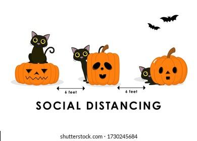 Social distancing (COVID-19) with cute black cat and spooky pumpkin. Animal holidays cartoon character. Corona virus protection-Vector.