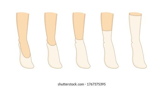 Socks types set. Vector illustration. Womans underwear collection.