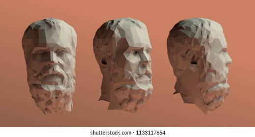 Socrates Head Vector 3D Rendering