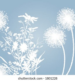 soft background flowers