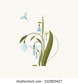 Soft card with snowdrops