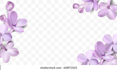 Purple flower background images stock photos vectors shutterstock soft pastel color floral 3d illustration on violet background purple lilac flowers and petals watercolor mightylinksfo