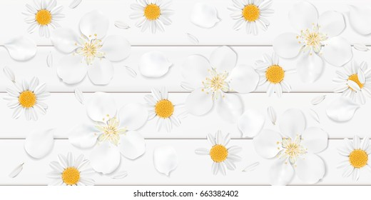 Soft pastel color floral 3d illustration on white background. Yellow wild Camomile and Sakura flowers with petals watercolor style vector illustration template. Eco organic pattern