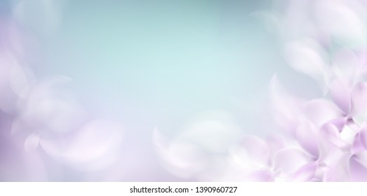 Soft spring background with purple blurred flower petals and feathers vector illustration