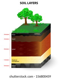Soil Formation and Soil Horizons. Soil is a mixture of plant residue and fine mineral particles, which form layers. Vector diagram