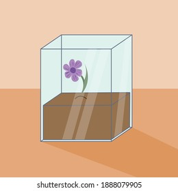 Soil in glass rectangle prism and the light purple flower coming out of that soil. Vector illustration