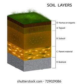 Soil Layers diagram. Cross section of green grass and underground soil layers beneath