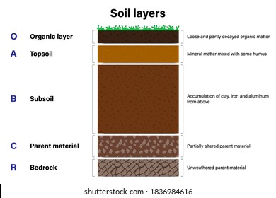 Soil layers diagram, Geological study