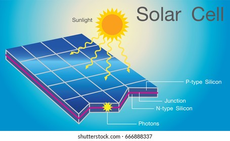 Solar cells in an integrated group, all oriented in one plane, constitute a solar photovoltaic panel or solar photovoltaic module. Info graphic vector.