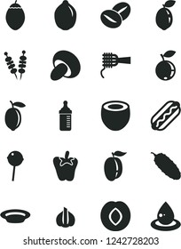 Solid Black Vector Icon Set - measuring bottle for feeding vector, fried vegetables on sticks, Hot Dog, noodles, porcini, plate, cucumber, peper, coffee beans, Chupa Chups, plum, blueberry, ripe