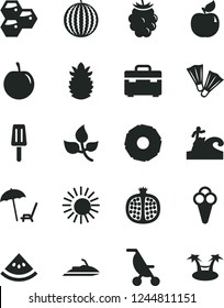 Solid Black Vector Icon Set - summer stroller vector, suitcase, popsicle, cone, honeycombs, half pomegranate, apricot, blackberry, water melon, tasty plum, ripe pineapple, slice of, leaves, sun