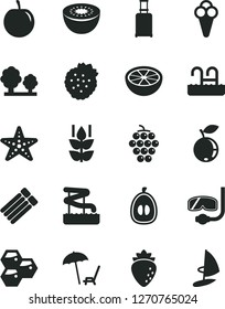 Solid Black Vector Icon Set - cone vector, strawberries, mint, honeycombs, large grape, raspberry, blueberry, half loquat, tasty plum, kiwi, of grapefruit, trees, rolling suitcase, pool, aquapark