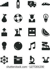 Solid Black Vector Icon Set - bulb vector, music, folder, pear, orange, slice of water melon, Express delivery, usb, test tube, microscope, 3d cube, stairway, man with flag, idea, king, limousine
