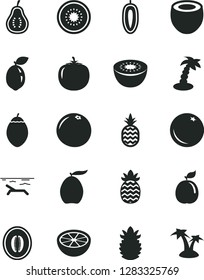 Solid Black Vector Icon Set - a pineapple vector, orange, loquat, half melon, sweet date fruit, kiwi, of, tamarillo, sour lime, guava, coconut, ripe, grapefruit, part, persimmon, beach, palm tree