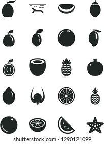 Solid Black Vector Icon Set - a pineapple vector, orange slice, pomegranate, mango, loquat, lime, tamarillo, sour, half of, guava, guawa, piece coconut, grapefruit, physalis, beach, starfish