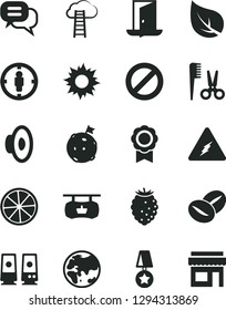Solid Black Vector Icon Set - prohibition vector, loudspeaker, accessories for a hairstyle, coffee beans, tasty raspberry, slice of lemon, leaf, planet, antique advertising signboard, goal woman