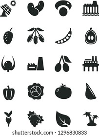 Solid Black Vector Icon Set - tomato vector, garlic, branch of grape, squash, cornels, tasty mulberry, goji berry, half loquat, physalis, Bell pepper, peas, beans, mashroom, radish, big solar panel