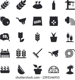 Solid vector icon set - ear flat vector, garlic, cranberry, mustard, seeds, home plant, hose, rake, planting plants, irrigation, garden wheelbarrow, tulip, seedlings, greenhouse, crane, spike