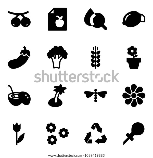 Solid vector icon set - rowanberry vector, diet list, blood test, lemon, eggplant, broccoli, spica, flower pot, coconut cocktail, palm, dragonfly, tulip, recycling, oiler