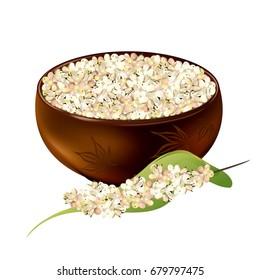 Sorghum (gaoliang, durra, milo, hegari, jowari, Sorghum bicolor). Hand drawn realistic vector illustration of white sorghum grains in ceramic bowl with panicle isolated on white background.