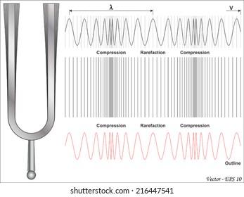 Sound Wave - Longitudinal Wave