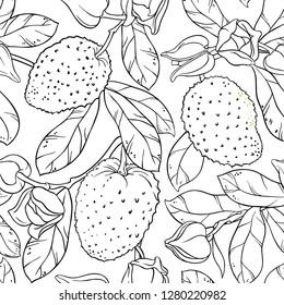 soursop seamless pattern on white background