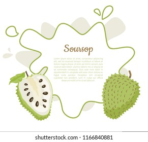 Soursop whole and cut fruit in abstract frame for text vector poster isolated on white vector. Annona montana edible medicinal plant in Annonaceae family