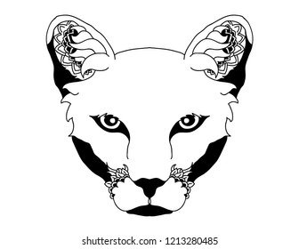 Southern California Mountain Lion Vector Illustration