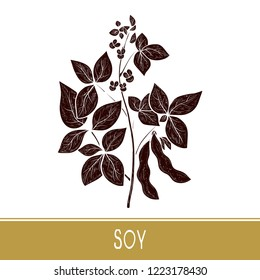Soy. Plant Leaves, flower, branch, pod.  Black silhouette on white background.