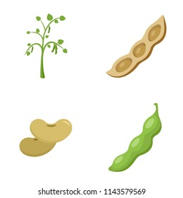 Soybean soy beans seed icons set. Flat illustration of 4 soybean soy beans seed vector icons isolated on white