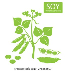 Soybeans plant Silhouette Vector Illustrations On A White Background. Soy beans plant  illustration green vector icon.