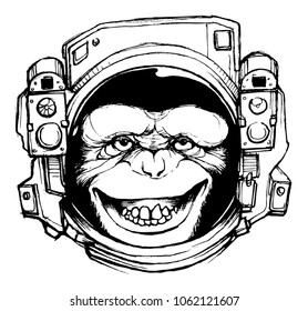 space monkey vector file
