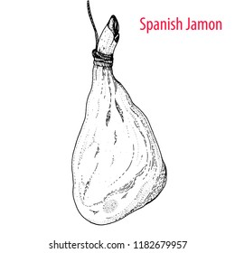 Spanish jamon hand drawn sketch. Engraved illustration.