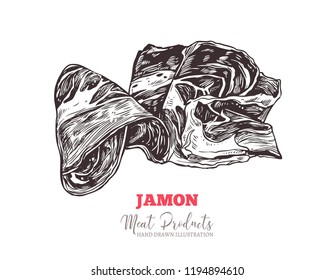 Spanish jamon, italian prosciutto crudo or parma ham in vector hand drawn style. Slices of dry cured meat sketch illustration. Farm natural product