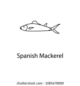 spanish mackerel icon. Element of marine life for mobile concept and web apps. Thin line spanish mackerel icon can be used for web and mobile. Premium icon on white background