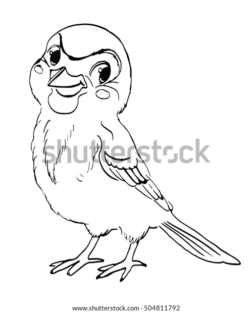 Sparrow Birdcharacter Vector Sketch Coloring Book Stock ...