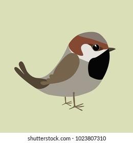 A sparrow comic illustration