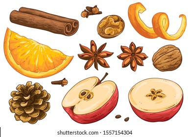 Special collection of winter spices vector illustration. Group of star anise, walnut, apple, orange peel, cinnamon rolls, cloves, cone. Hand drawn isolated on white background. Hot drink spices.