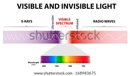spectrum waves includes infrared rays 450w 168983675 spectrum waves includes infrared rays visible stock vector (royalty