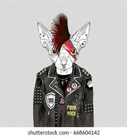 sphinx cat punk, furry art illustration, fashion animals