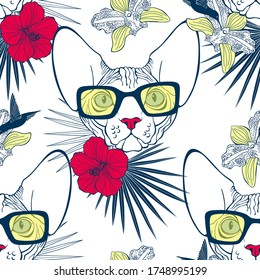 Sphynx cat face,hibiscus, orchid, hummingbird and palm leaves. Seamless vector pattern on white. Hand-drawn vector illustration. Animal art background.