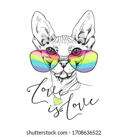 Sphynx cat in a rainbow glasses. T-shirt composition, hand drawn style print. Vector illustration.