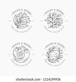 Spice and herb label collection. Black and white round sticker templates. Fresh local organic collection - logo in trendy linear style