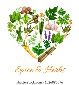 Spice and herbs heart shape. Vector lavender flowers and leek, nutmeg, green basil, lemongrass and parsley. Garlic and mint, marjoram and tarragon, poppy seeds, cardamon, dill and sage, celery