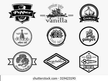 Spice logo set in vintage style. Vector illustration with lettering. Retro hand drawn spice logotypes collection.