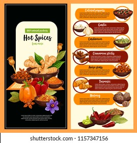 Spice shop poster of hot condiment and seasoning template. Pepper, cinnamon and garlic, star anise, nutmeg and cardamom, ginger, saffron and turmeric food ingredient banner for farm market design